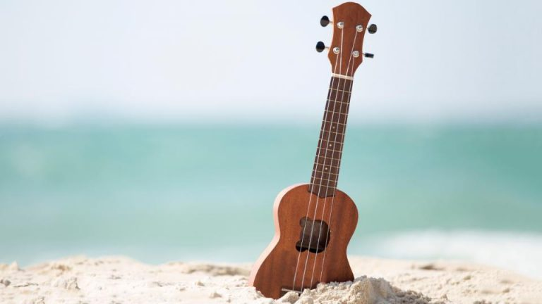 The Ultimate List of Best Ukuleles Under 300 Dollars 2021